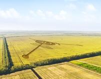 Cottage settlement Yubileinyi
