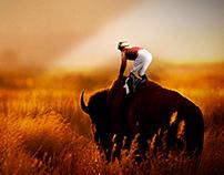 Bison Ride