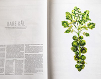 Brussels Sprouts for Norwegian Financial Times