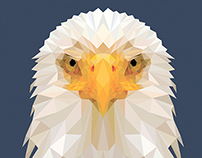 Bald Eagle Low Poly