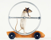 AIGA San Francisco Fall Gala Derby Car: Rat Racer