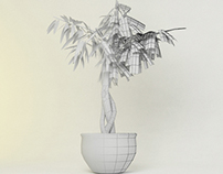 3d Foliage Models