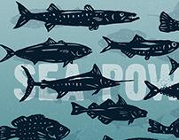 Hand-drawn fish illustrations