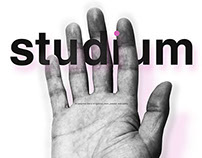 studium ® THE ENTITY & THE ETERNAL BRAND