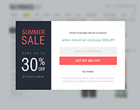 Popup / Modal Window Designs