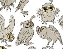 Bucket O' Owls