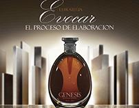 GENESIS packaging - 2011