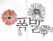 HANGUL // FLOWER