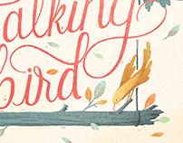 Oh, My Talking Bird