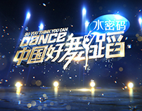 ZJSTV 2014 SO YOU THINK YOU CAN DANCE