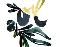 "HANDLETTERING ""Olive Oil"""
