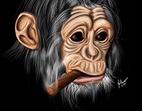 Junkey the monkey