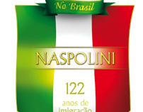Naspolini Family Party