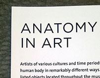 CMA Anatomy In Art