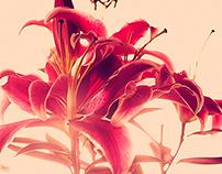 Floral Soul.