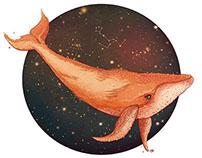 Deep sea creature *