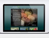 Franklin Candle Website