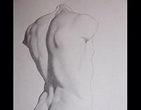 Bargue Drawing Course: Torso 2
