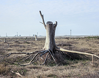 Epecuén | The city that emerged from water | 1
