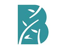 Branding for Bamboo Fundraising Consultants
