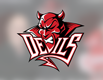 Cardiff Devils / Help for Heroes Charity Game