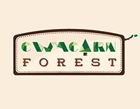 Cwmcarn Forest Website