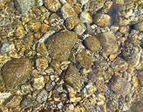 Clear Water and Pebbles