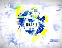 BRAZIL ELECTIONS 2014 STING