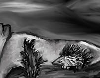 Puercoespin blanco negro