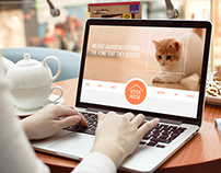 Non-profit Web Redesign
