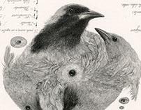 """""""Método para ser un ave"""""""
