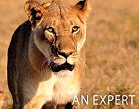 NIKON   Photography Meet in Kenya