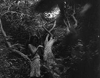 Druids / Medium format film