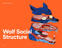 Wolf Social Structure — Illustration for the magazine