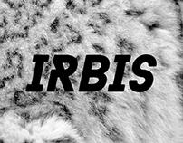 Irbis Ski Club | Logo