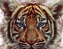 Hijo de Tigre (sale pintao)