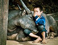 Sapa: Vietnams Northern Gem