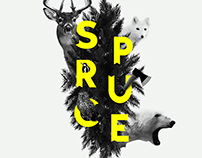 Spruce - Collage