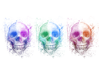 The Coloured Skulls of St Jimmy