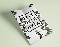 Redesign concept of Gyorgytea