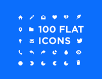 100 flat icon