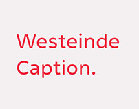 Westeinde Caption Type Family