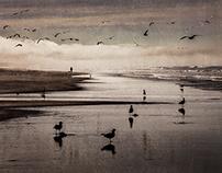 Beach Impression