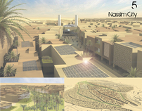 NASSIM, a Sustainable City in the Desert(2010)
