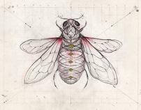 Honey Hunter (my new logo)