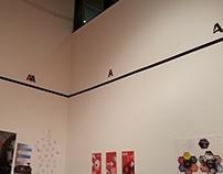 Senior BFA Exhibition