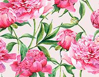 Beautiful watercolor bouquet of pink peonies