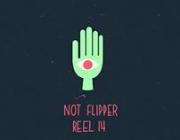 Not Flipper Showreel 2014