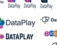 Dataplay Project Examples