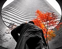 Chicago October